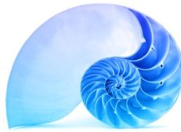 Fibonacci proportioned shell