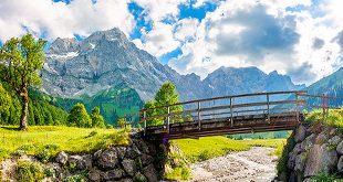 A Bridge in Consciousness