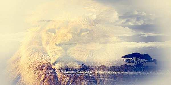 Lion of Truth