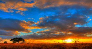 Light of the Rising Sun