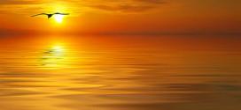 Spiritual Sun hidden by disc of Golden Light