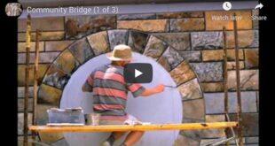 The Story of Community Bridge