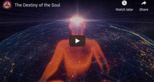 The Destiny of the Soul