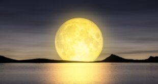 Full Moon Meditation Meeting Schedule 2020