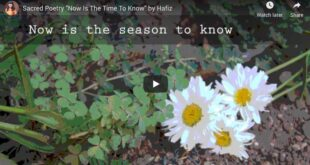 "Sacred Poetry ""Now Is The Time To Know"" by Hafiz"