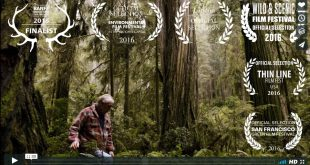 moving the giant redwoods video