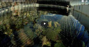 Odyssey in 2 Biospheres