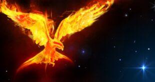 Phoenix in space