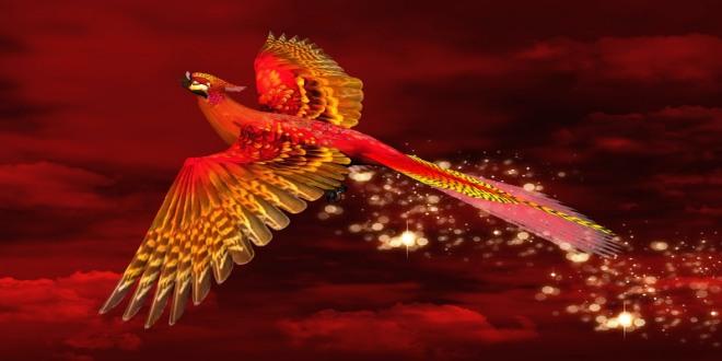 phoenix scorpio