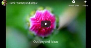 Beyond Ideas